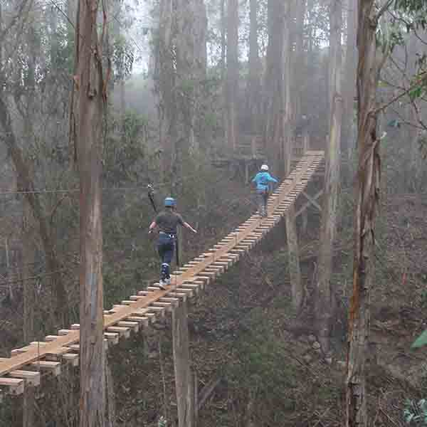 Haleakala Zipline Bridge